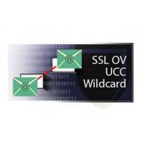 Positive OV Multi-Domain SSL